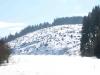 Horný Háj - Kalamita 2005 zima