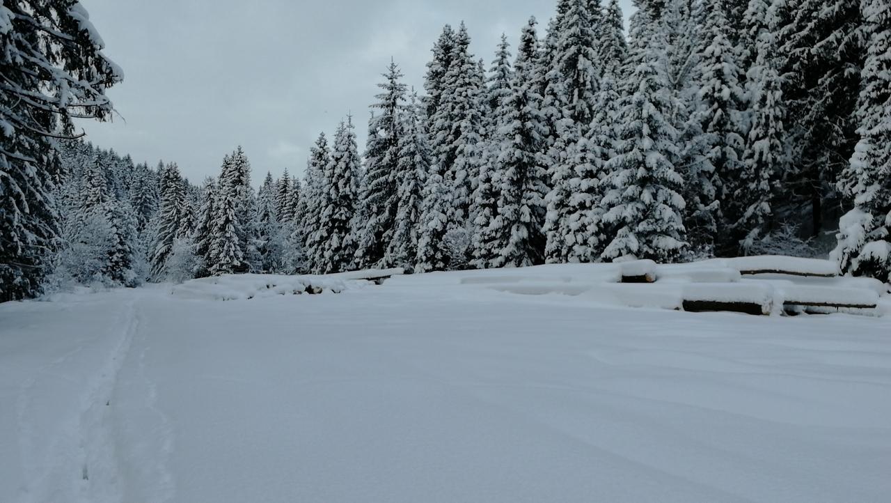 Zima2018-2019